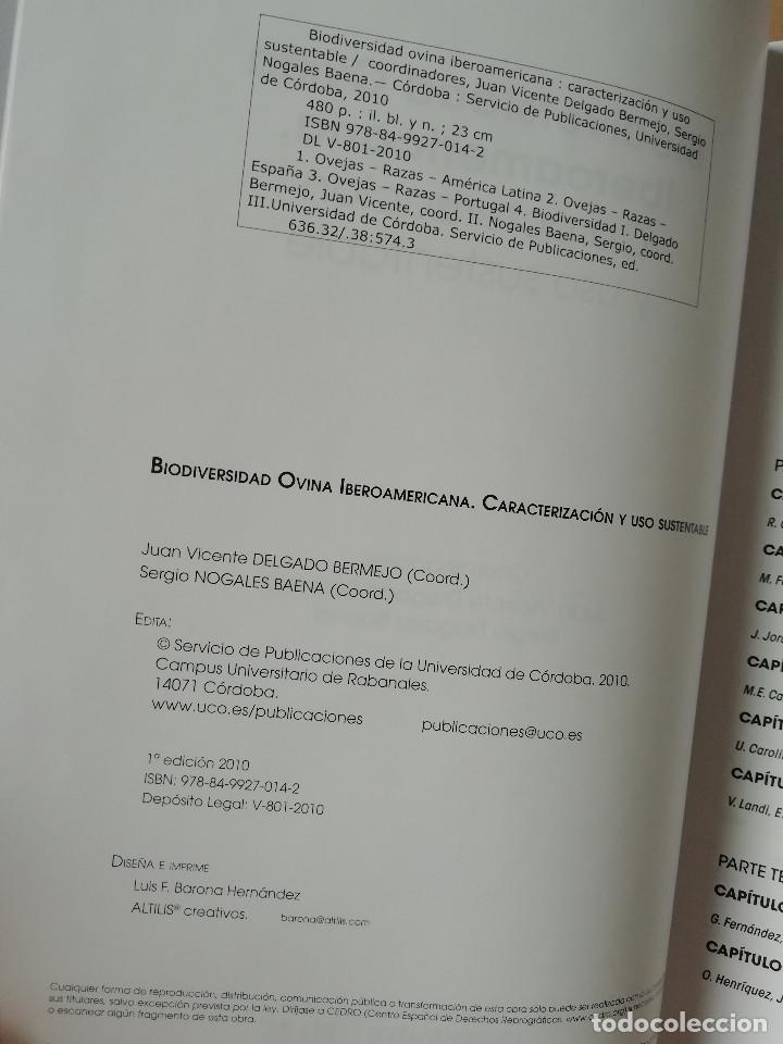 Libros: Biodiversidad ovina iberoamericana. Caracterización y uso sustentable Juan Vicente Delgado Bermejo - Foto 2 - 287318458