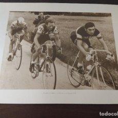 Coleccionismo deportivo: LAMINA CICLISMO/FRANCISCO GABICA/MERCKX/TOUR 1971.. Lote 163326666