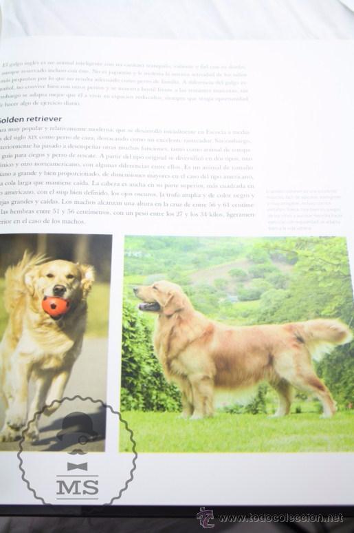 Libros: Enciclopedia de 11 Tomos - Reino Animal. Instinto Supervivencia - Ed. Signo, Año 2011 - Foto 8 - 51574908