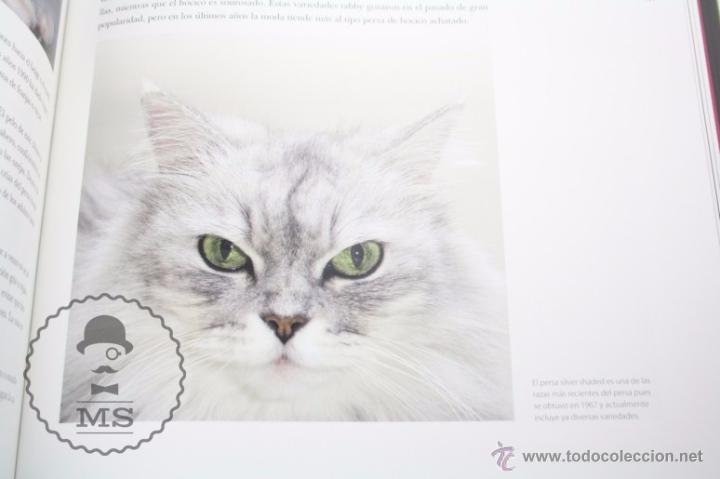 Libros: Enciclopedia de 11 Tomos - Reino Animal. Instinto Supervivencia - Ed. Signo, Año 2011 - Foto 10 - 51574908