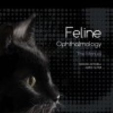 Libros: FELINE OPHTHALMOLOGY : THE MANUAL. Lote 136703684