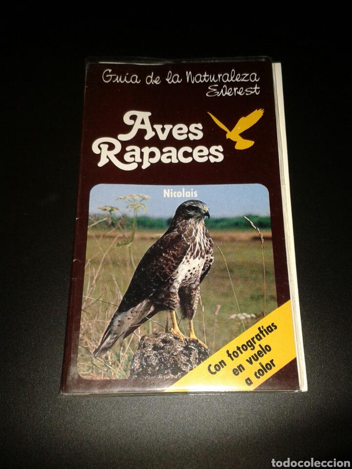 GUIA NATURALEZA EVEREST AVES RAPACES (Libros Nuevos - Ciencias Manuales y Oficios - Ciencias Naturales)