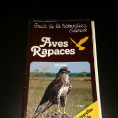 Libros: GUIA NATURALEZA EVEREST AVES RAPACES. Lote 136729162