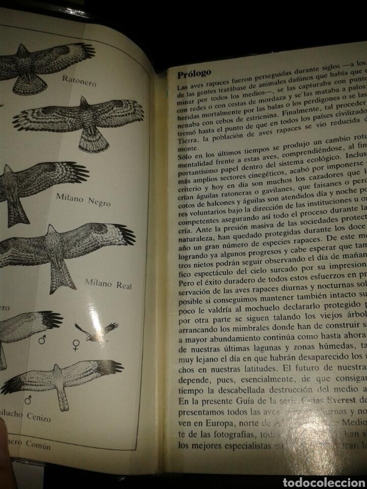 Libros: GUIA NATURALEZA EVEREST AVES RAPACES - Foto 3 - 136729162
