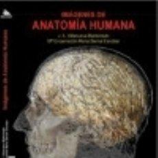 Libros: IMÁGENES DE ANATOMÍA HUMANA. DVD. Lote 139524605