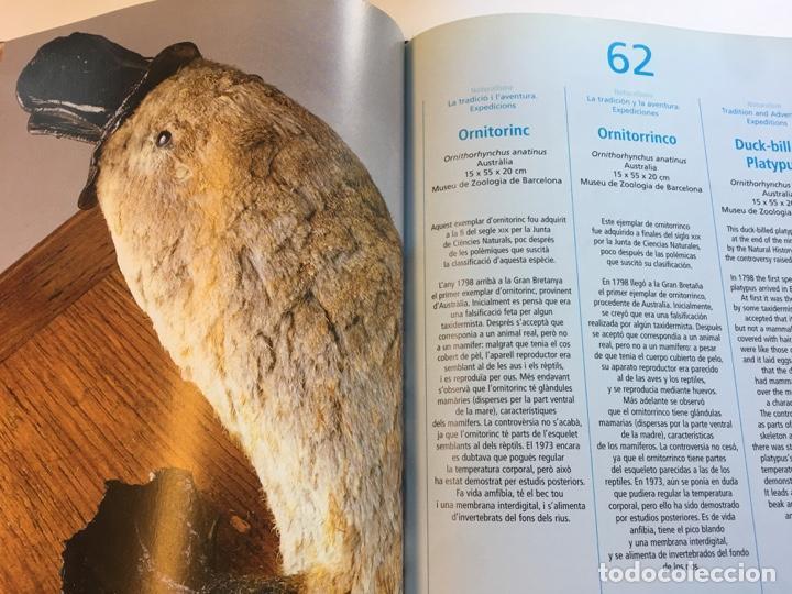 Libros: Tresors de la Natura catálogo exposición año 2000 - Foto 4 - 159073590