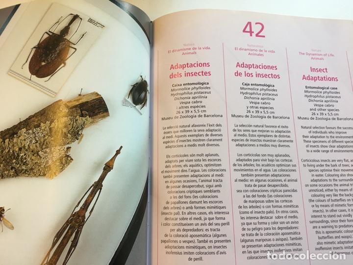 Libros: Tresors de la Natura catálogo exposición año 2000 - Foto 5 - 159073590