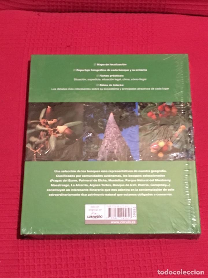 Libros: Bosques de España. Editorial Lunwerg - Foto 2 - 182621695