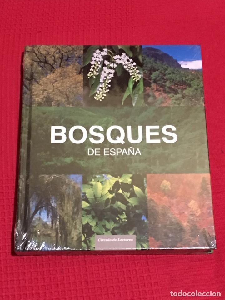 BOSQUES DE ESPAÑA. EDITORIAL LUNWERG (Libros Nuevos - Ciencias Manuales y Oficios - Ciencias Naturales)
