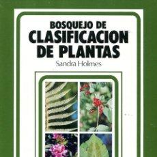 Libros: BOSQUEJO DE CLASIFICACIÓN DE PLANTAS (SANDRA HOLMES) EUNSA 1991. Lote 183176642