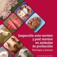 Libros: INSPECCIÓN ANTE MORTEM Y POST MORTEM EN ANIMALES DE PRODUCCIÓN : PATOLOGÍAS Y LESIONES. Lote 183807933