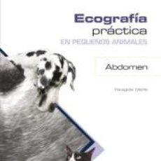 Libros: ECOGRAFÍA PRÁCTICA EN PEQUEÑOS ANIMALES. ABDOMEN.. Lote 193988065