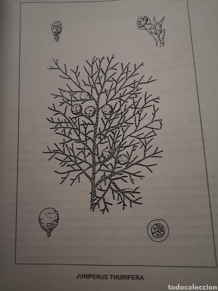 Libros: Manual Guarda Forestal Objeción de Conciencia - Foto 3 - 205078667