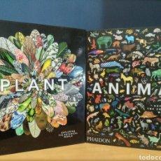 Libros: PHAIDON , HISTORIA NATURAL , ANIMALES Y PLANTAS. Lote 213859986