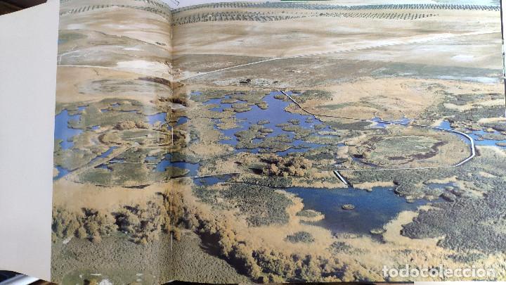 Libros: Las Tablas de Daimiel - Foto 3 - 217409171