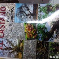 Libros: EL CASTAÑO,MANUAL Y GUÍA DIDÁCTICA. Lote 221388390