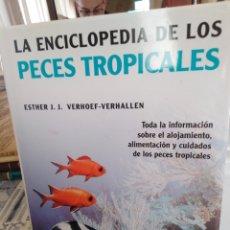Libros: LA ENCICLOPEDIA DE LOS PECES TROPICALES-ESTHER J.J.VERHOEF-VERHALLEN-EDITA LIBSA 2005,ILUSTRADO. Lote 222897891