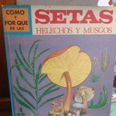 Libros: MOLINO : CÓMO Y POR QUÉ DE LAS SETAS, HELECHOS Y MUSGOS (1973). Lote 228278905