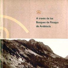 Libros: A TRAVÉS DE LOS BOSQUES DE PINSAPO DE ANDALUCÍA. EDICIÓN FACSÍMIL. Lote 237848160
