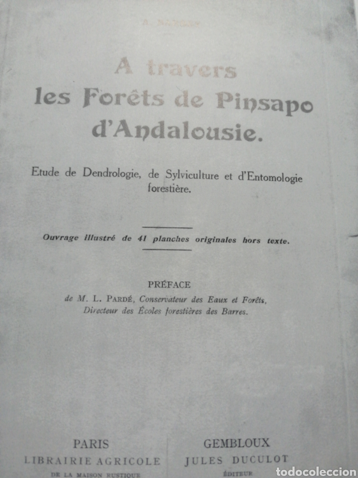 Libros: A través de los Bosques de Pinsapo de Andalucía. Edición Facsímil - Foto 2 - 237848160