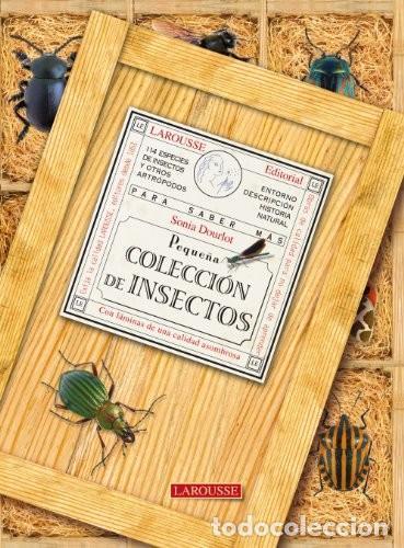 PEQUEÑA COLECCION DE INSECTOS. LAROUSSE (Libros Nuevos - Ciencias Manuales y Oficios - Ciencias Naturales)