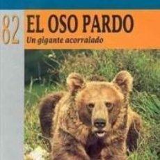 Libros: EL OSO PARDO. UN GIGANTE ACORRALADO. Lote 249029855