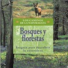 Libros: BOSQUES Y FLORESTAS. ECOGUÍA PARA DESCUBRIR LA NATURALEZA. Lote 254055070