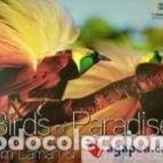 Libros: BIRDS OF PARADISE: REVEALING THE WORLDS MOST EXTRAORDINARY BIRDS. Lote 254545745