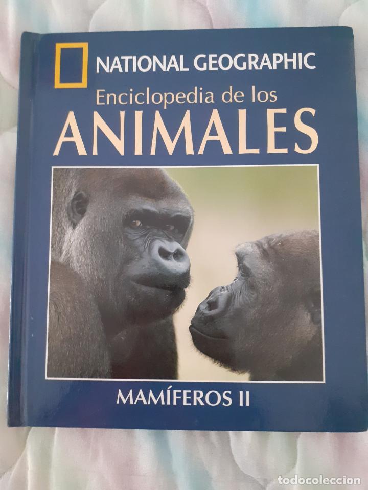 NATIONAL GEOGRAPHIC - ENCICLOPEDIA DE LOS ANIMALES - MAMIFEROS II (Libros Nuevos - Ciencias Manuales y Oficios - Ciencias Naturales)