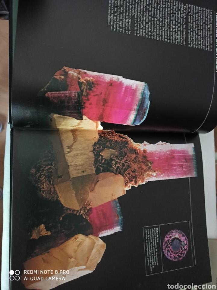 Libros: Planeta Tierra - Foto 9 - 264348554