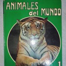 Libros: ANIMALES DEL MUNDO. N°1. UN LIBRO CON HERMOSAS FOTOGRAFÍAS Y UNA BREVE EXPLICACIÓN. EN BUEN ESTADO. Lote 266004673