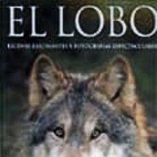Libros: EL LOBO: ESCENAS FASCINANTES. SHAUN ELLIS. Lote 268571624