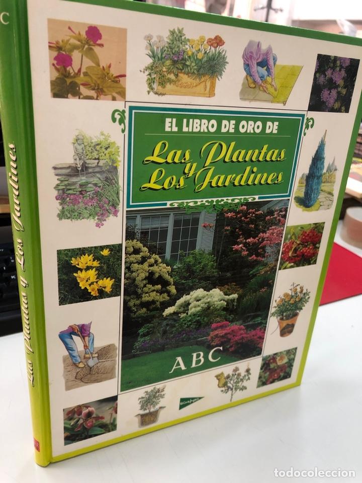 EL LIBRO DE ORO DE LAS PLANTAS Y LOS JARDINES - ABC EL CORTE INGLES (Libros Nuevos - Ciencias Manuales y Oficios - Ciencias Naturales)