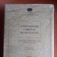 Libros: A PROPIEDADE COMUNAL NO SÉCULO XX. Lote 278524038
