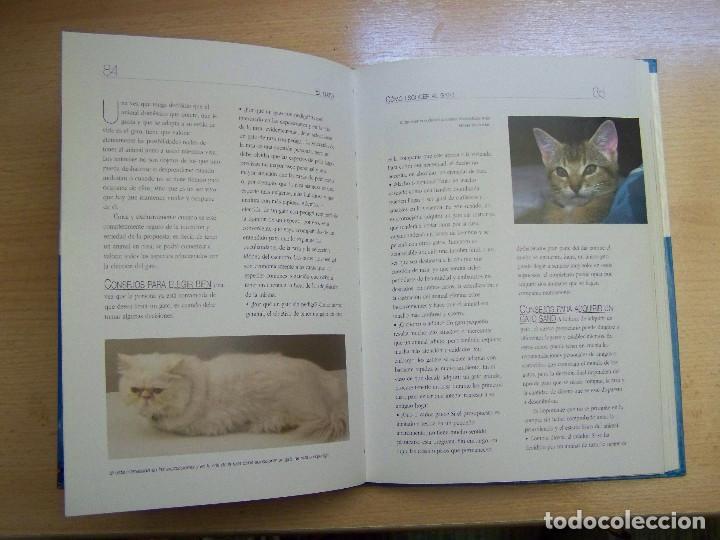 Libros: LIBRO EL GATO - Foto 2 - 98192487