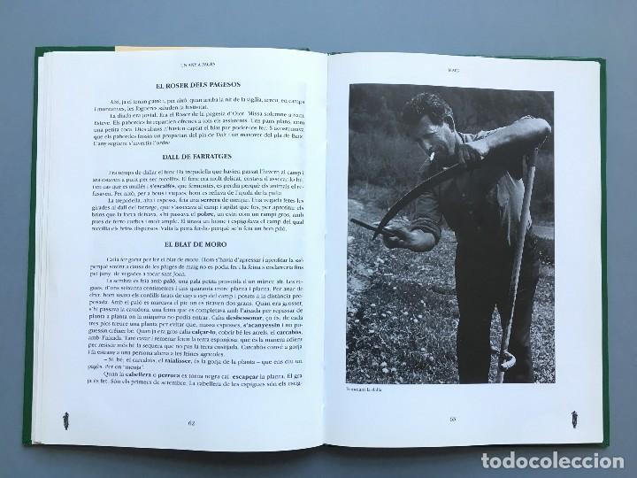Libros: UN ANY A PAGÈS DE RAMON LLONGARRIU. LIBRO EN CATALAN DE LA EDITORA LLIBRES DE BATET. - Foto 5 - 120616007