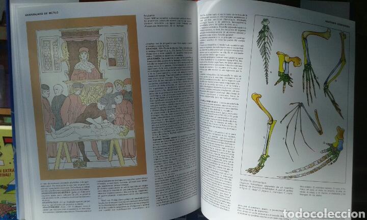 Libros: Gran enciclopedia de la ciencia y de la técnica. Oceano - Foto 2 - 134760354