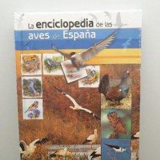 Libros: LA ENCICLOPEDIA DE LAS AVES DE ESPAÑA (INCLUYE DVD) NUEVO - SEO/BIRDLIFE 1ª EDICIÓN. (ENVÍO 2,40€). Lote 145663334