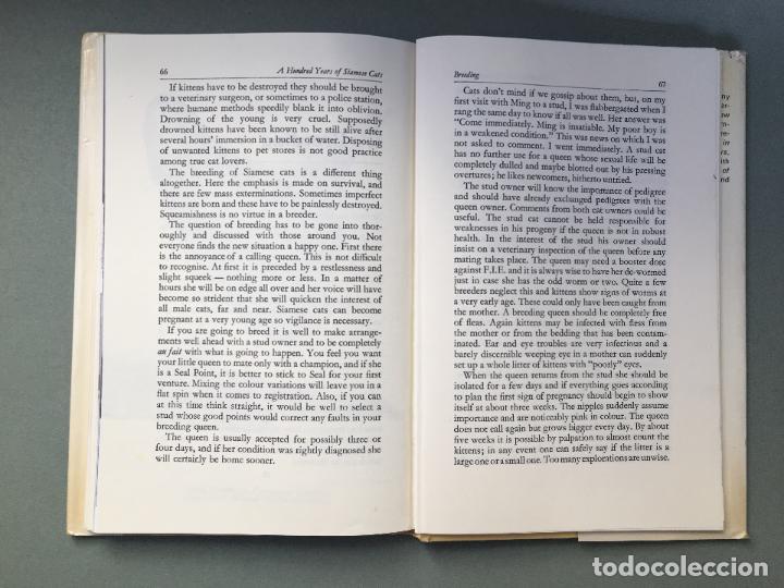 Libros: LIBRO sobre GATOS SIAMESES. EN INGLÉS A HUNDRED YEARS OF SIAMESE CATS BI MAY EUSTACE - Foto 3 - 145964802