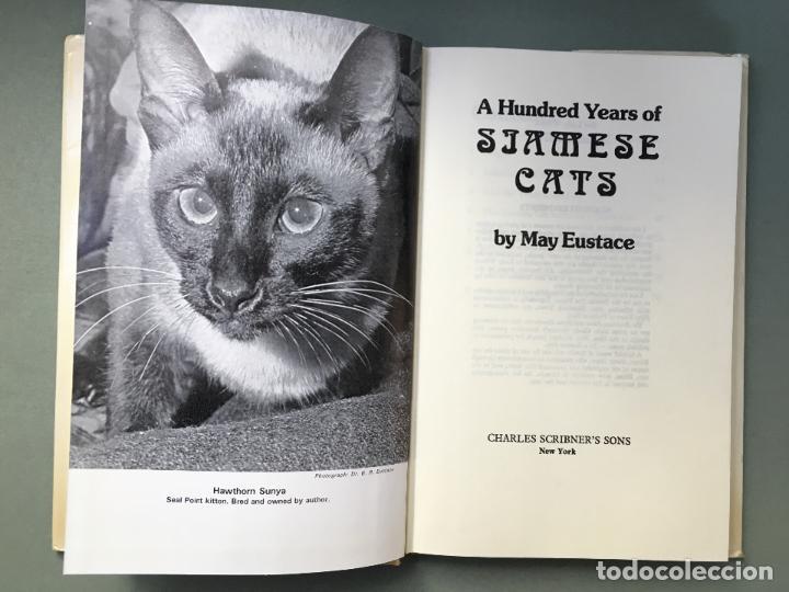Libros: LIBRO sobre GATOS SIAMESES. EN INGLÉS A HUNDRED YEARS OF SIAMESE CATS BI MAY EUSTACE - Foto 2 - 145964802