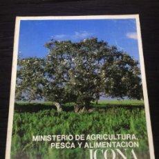Libros: MINISTERIO DE AGRICULTURA CAZA Y PESCA ICONA MEMORIA 1981. Lote 147997386