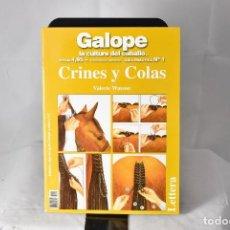 Libros: CRINES Y COLAS . LA CULTURA DEL CABALLO . WATSON, VALERIE. Lote 155149098