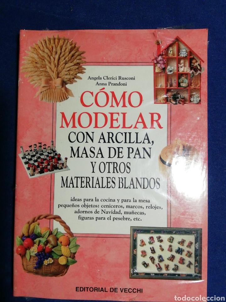 NUEVO EN EL PLÁSTICO. COMO MODELAR CON ARCILLA, MASA DE PAN Y OTROS MATERIALES BLANDOS. (Libros Nuevos - Ciencias, Manuales y Oficios - Otros)