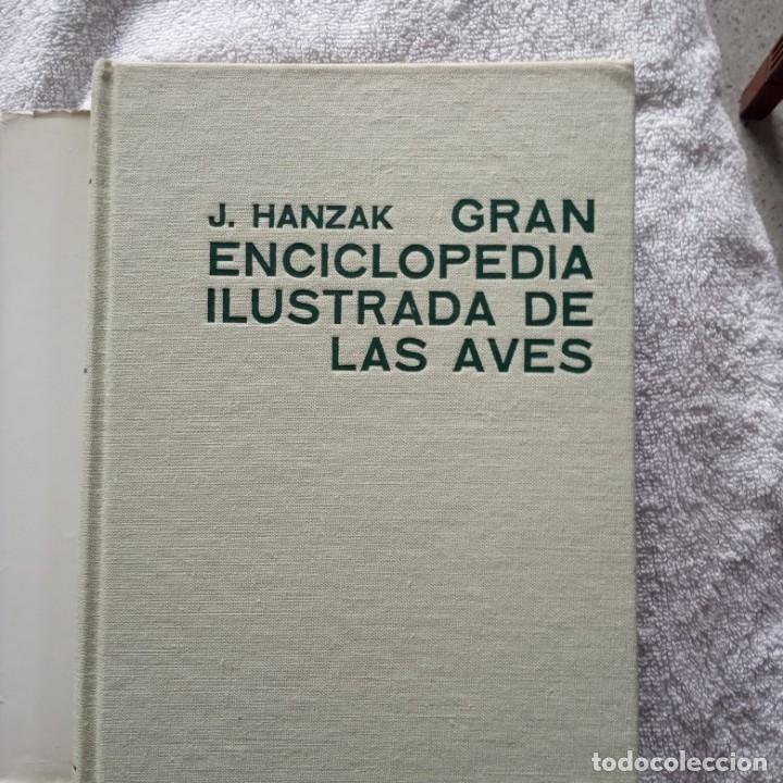 Libros: gran enciclopedia ilustrada de las aves j. hanzak 1971 - Foto 2 - 181725647