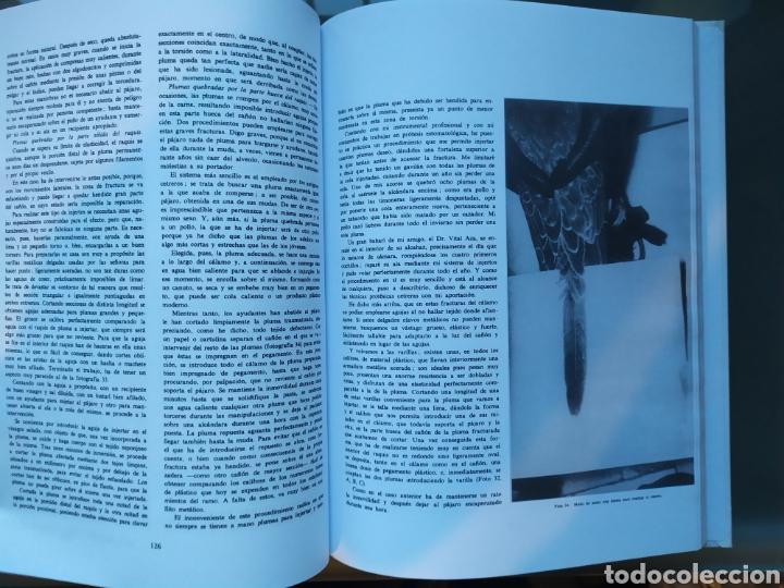 Libros: El Arte de la Cetrería. Félix Rodríguez de la Fuente - Foto 4 - 182786446