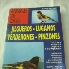 Libros: JILGUEROS,LUGANOS, VERDERONES, PINZONES. Lote 207112526