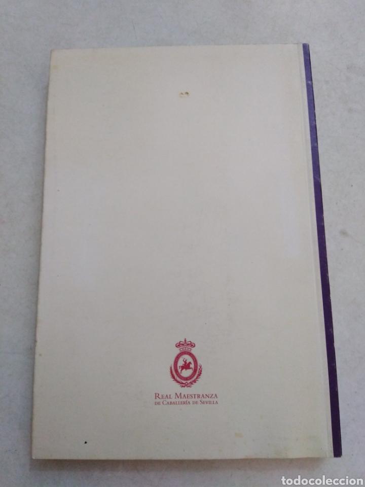 Libros: Nobleza y retrato ecuestre en el arte - Foto 2 - 220434051