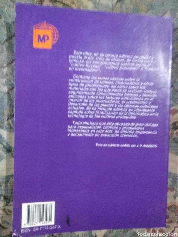 Libros: Cultivo de invernadero - Foto 2 - 221403162