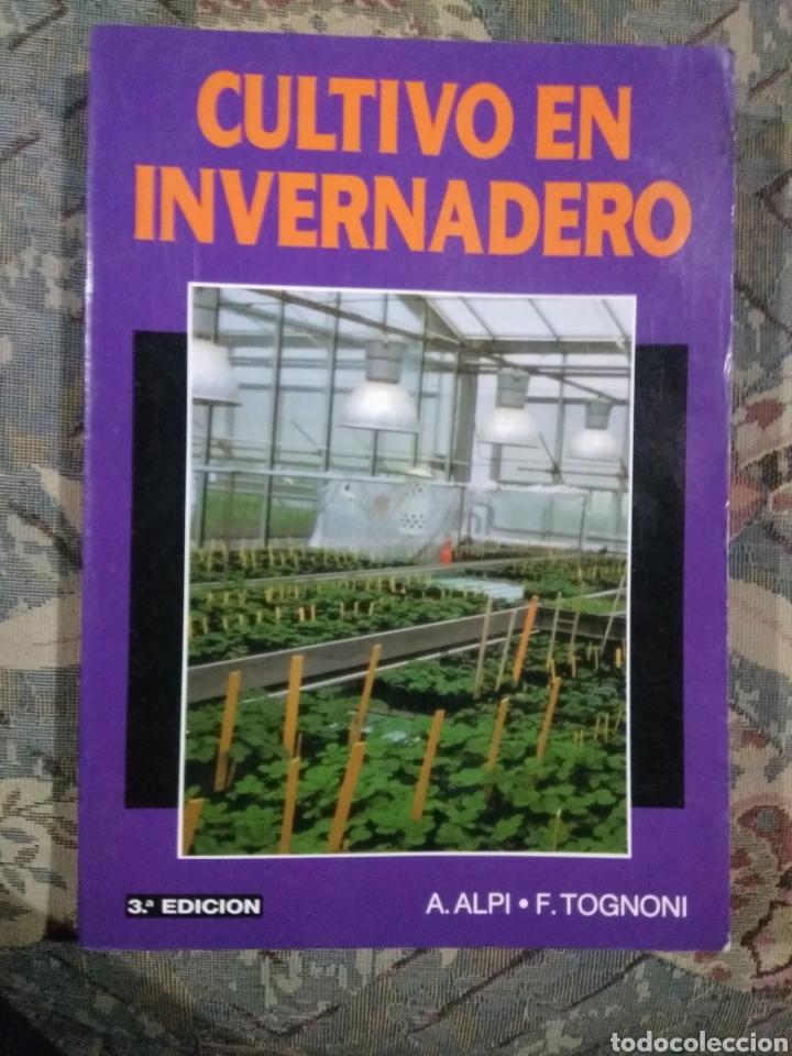 CULTIVO DE INVERNADERO (Libros Nuevos - Ciencias, Manuales y Oficios - Otros)