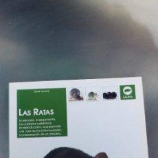 Libros: LAS RATAS,TAPA FINA,94 PAGINAS,EDITORIAL DE VECCHI,AÑO 2006. Lote 246327625